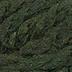PEWS 054 Herbs