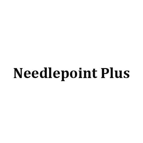Needlepoint Plus